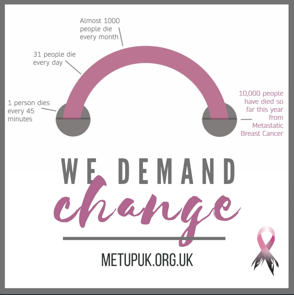 Screenshot of METUPUK graphic created by Emma Fisher